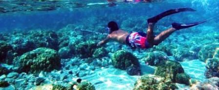 Spearfishing Trips at Pattaya Islands
